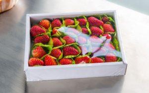 fruits wrapper machine